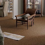 mattsons-carpet-2